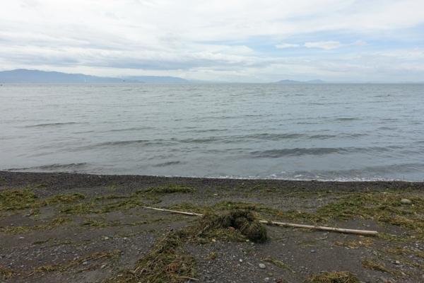 琵琶湖の砂浜