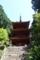 重文・三重塔