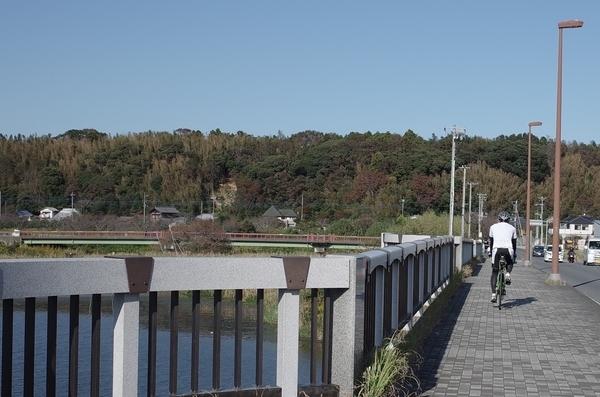 更に印旛沼湖畔を進む