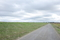 長い長い砂利道