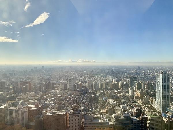都庁32階からの景色
