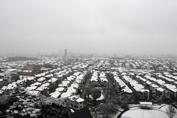 2月11日の雪景色