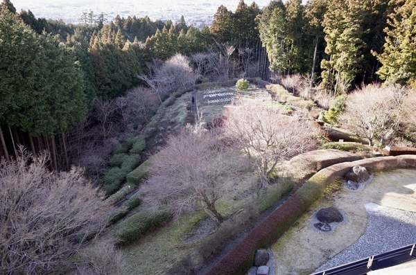 ララ御殿場下の庭園