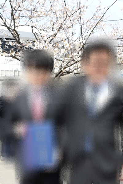ソメイヨシノとワタシと長男