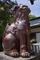陶器の狛犬吽形