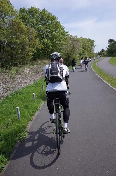 ひたち海浜公園内のサイクリングロード