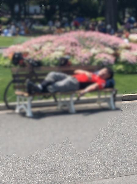 山下公園で爆睡
