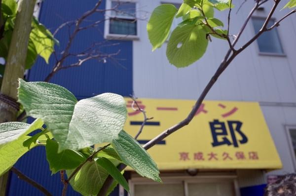 今週のラーメン二郎京成大久保店と白雲木