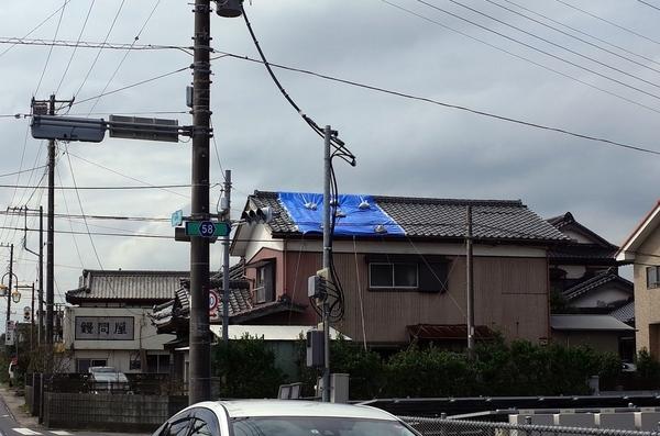 ブルーシートのかかる屋根