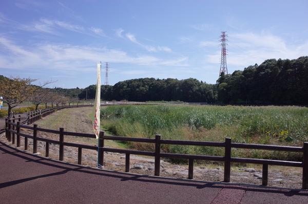 竹袋調整池