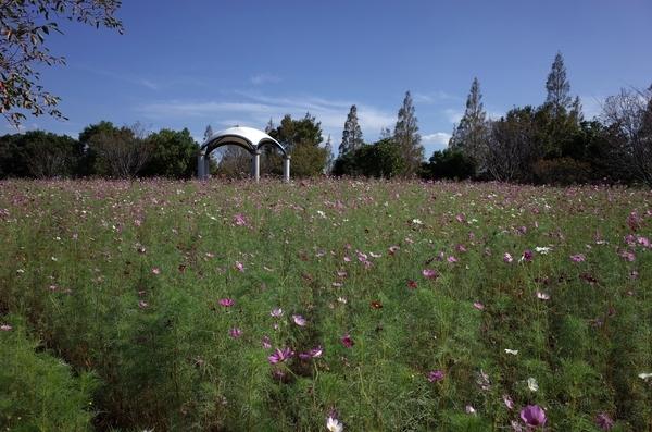 牧の原公園