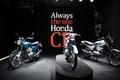 Always the one Honda CB