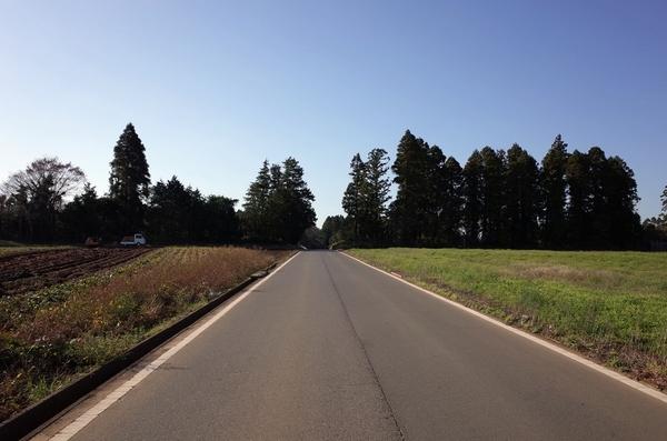 東金市内の農道