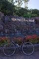 東京ディズニーリゾート入口のマイチャリ