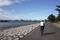 葛西臨海公園でゾウと合流