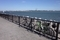 若洲海浜公園とチャリ二台