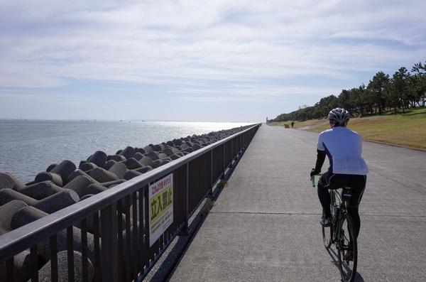 若洲海浜公園外周路
