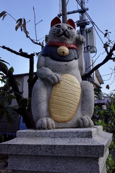 参道の招き猫