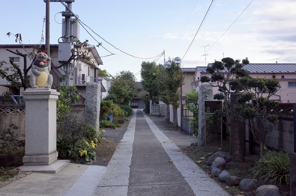 新青梅街道側参道