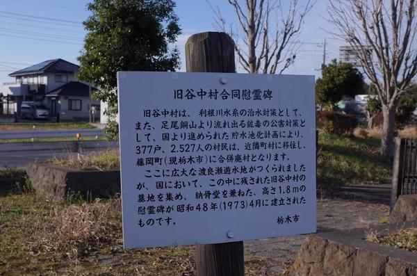 旧谷中村合同慰霊碑の案内