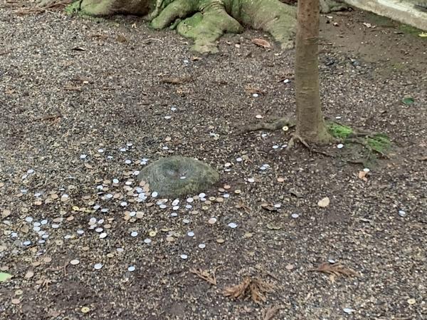 凹型の要石