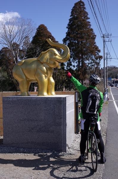 長福寿寺の吉ゾウくんとゾウ