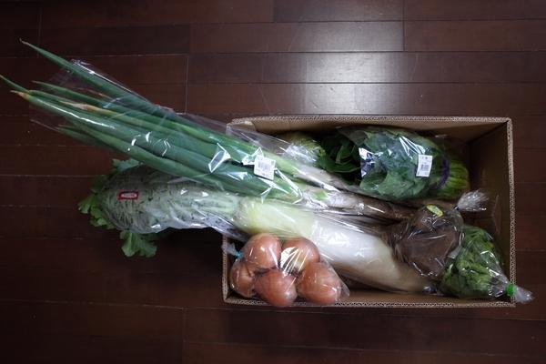 道の駅で購入した野菜