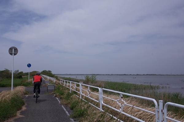 北印旛沼に出た