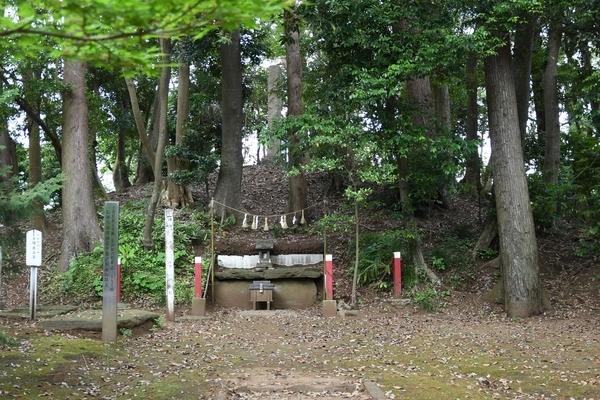 麻賀多神社から見た伝伊都許利命)