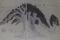 江戸時代「下総名称図絵」に描かれた大クス