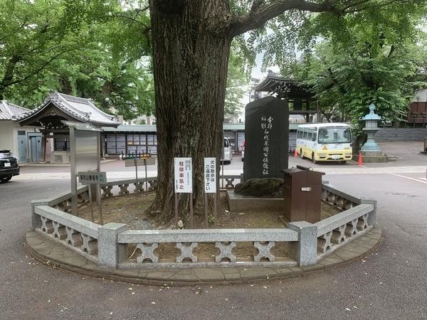 ハリス記念碑裏
