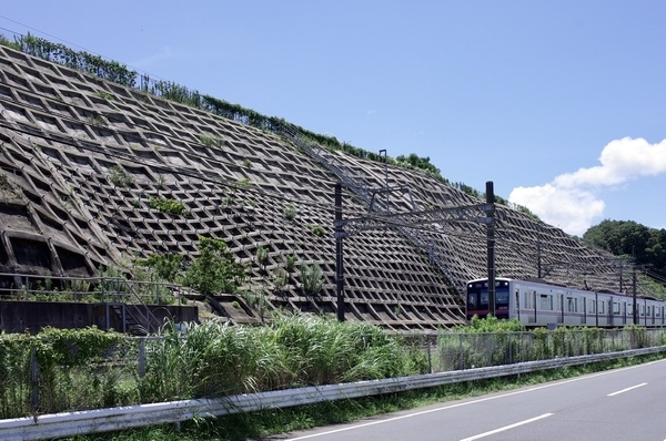 京成電車と法面