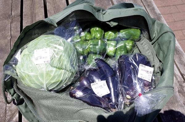 お土産の野菜