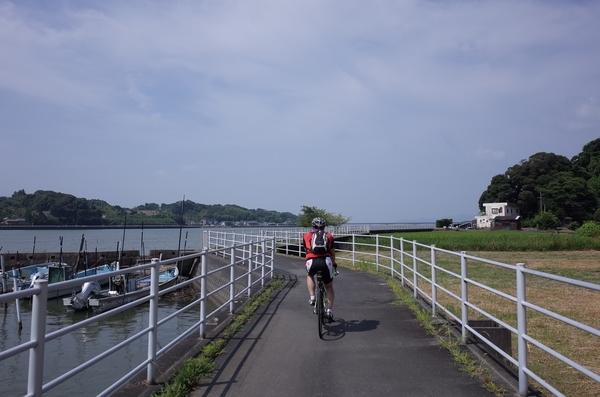 浜名湖周遊自転車道を走る