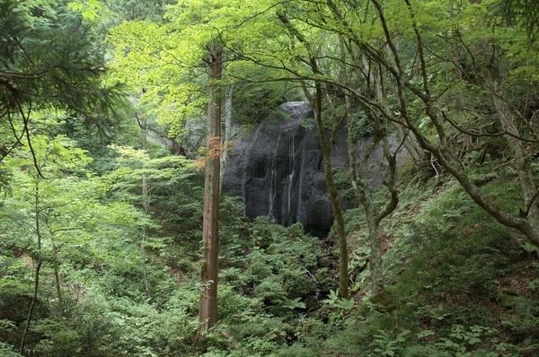 達沢不動滝 女滝