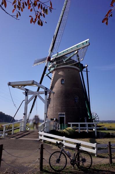オランダ風車とパナチタン