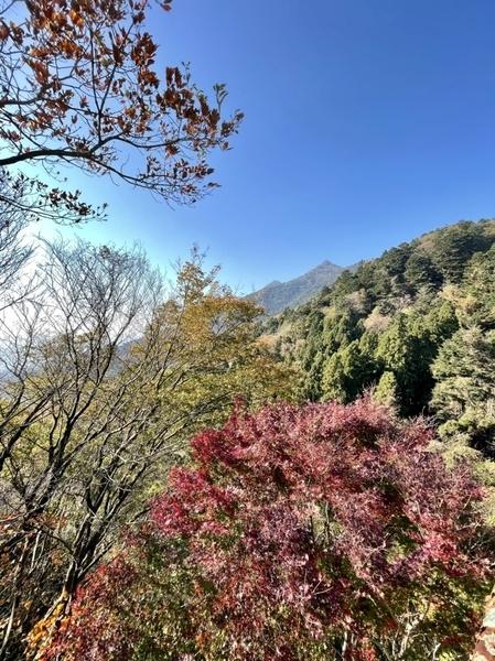 紅葉と筑波山