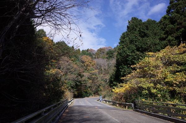 キツイ山道