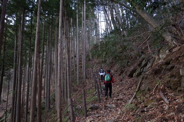 険しい山道を登る