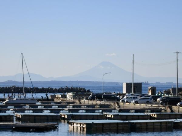 保田漁港から見えた富士山