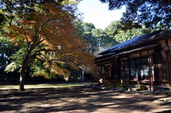 拾い物の旧岩崎家末廣別邸写真4