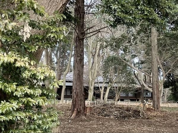 覗き見た旧岩崎家末廣別邸2