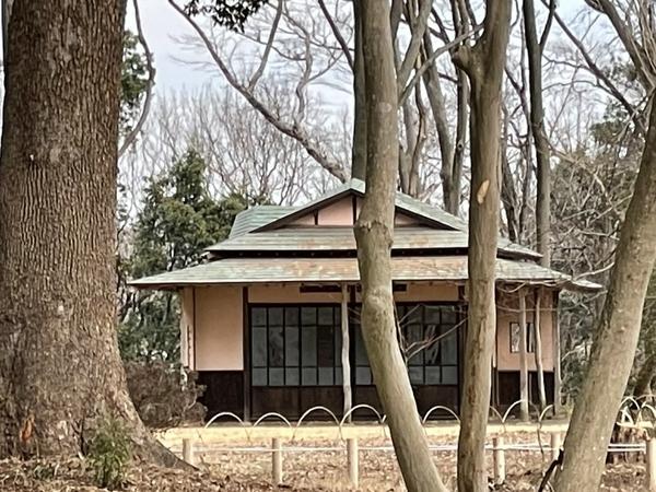 覗き見た旧岩崎家末廣別邸4