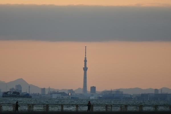 アクアリンクちば前から見た東京スカイツリー