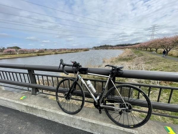 印旛沼放水路(新川)とパナチタン
