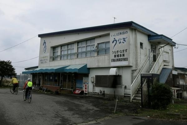 水産センター