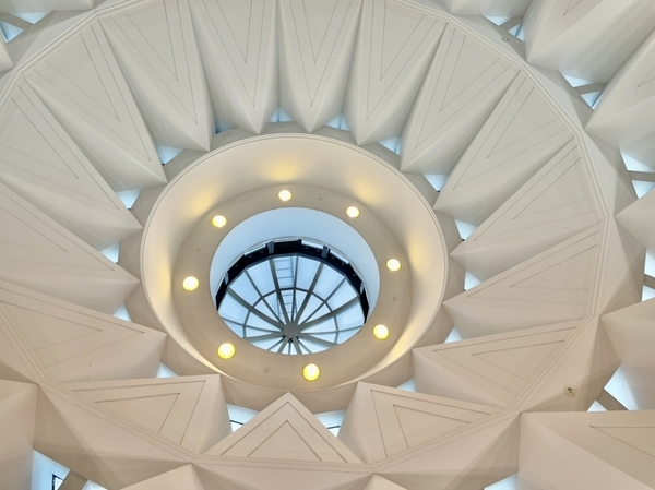 印旛日医大駅の天井