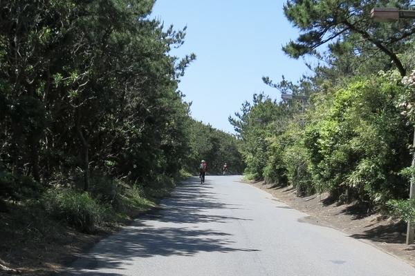 大島一周道路を更に進む
