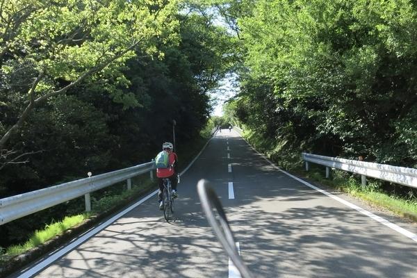 大島一周道路を進む