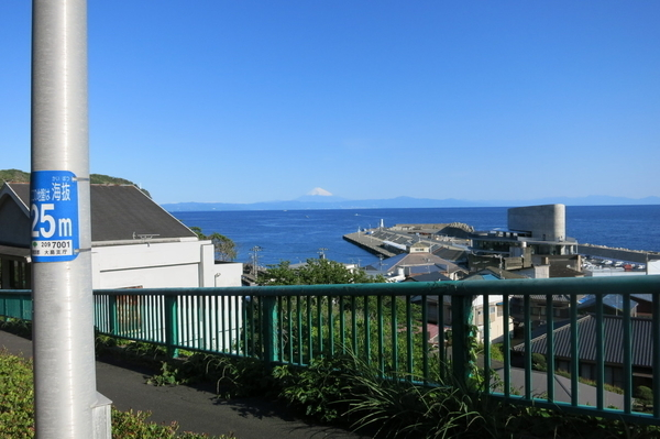 岡田港と富士山